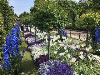 山下公園の庭園