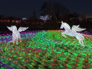 東武動物公園のイルミネーション