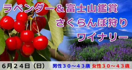 180624 ラベンダー&富士山鑑賞とさくらんぼ狩り・ワイナリー