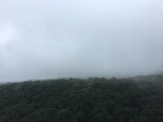 三島スカイウォークからの眺め・雨