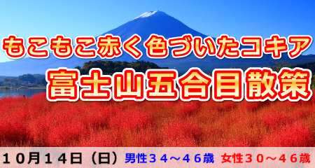 181014 もこもこ赤く色づいたコキア&富士山五合目散策