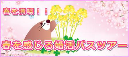 2019 春・満喫!!春を感じる婚活バスツアー特集