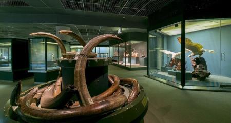 象牙美術館