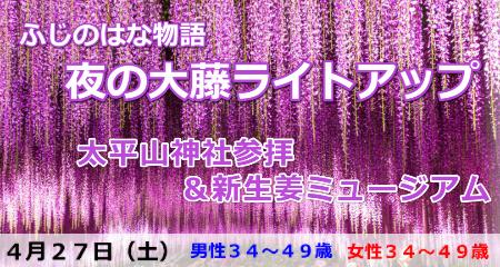 190427 ふじのはな物語・夜の大藤ライトアップ&太平山神社参拝と新生姜ミュージアム
