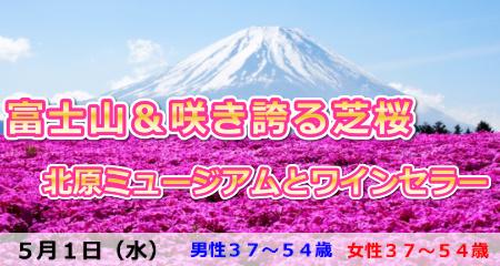 190501 首都圏最大級!富士山&咲き誇る芝桜・北原ミュージアム見学とワインセラー