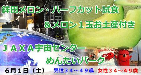 190601 メロン1玉お土産付き!日本一の「鉾田メロン」ハーフカット試食とJAXA宇宙センター&めんたいパーク