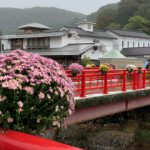 修善寺菊祭り