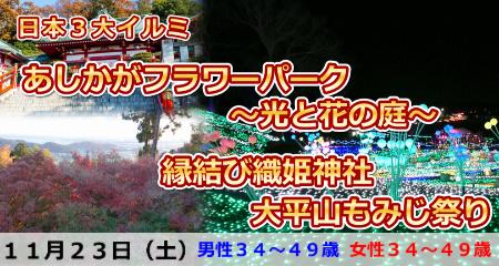191123 日本3大イルミ・あしかがフラワーパーク~光と花のコラボ&縁結び織姫神社と大平山もみじ祭り