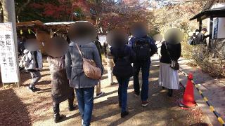 修善寺公園にて散策