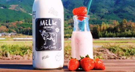 いちごミルク作り体験