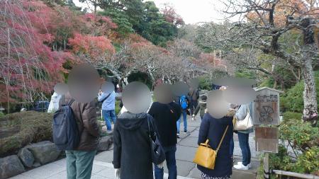 長谷鎌倉イベント