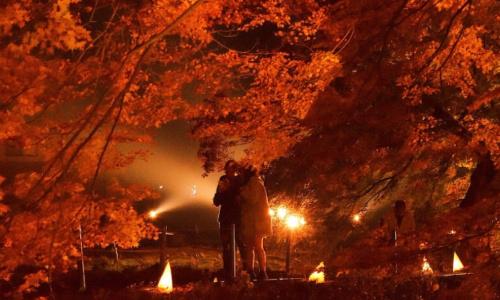 河口湖もみじ祭りライトアップ